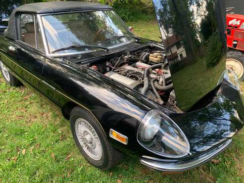1978 Alfa Romeo Spider for sale in Montclair, NY