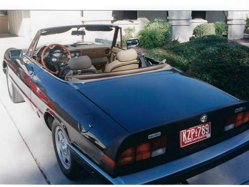 Vintage 1984 Alfa Romeo Spider Veloce for sale in Chandler, AZ